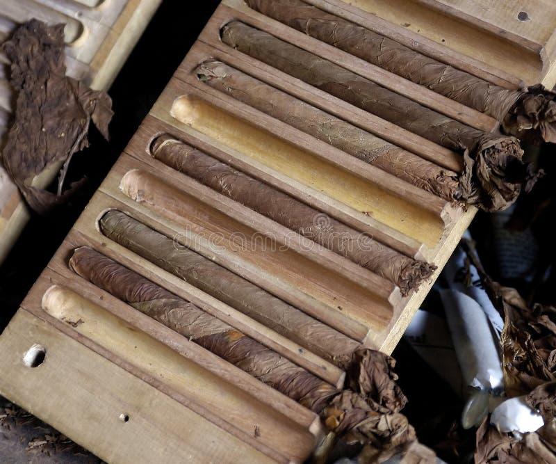Primo piano dei sigari fatti a mano da Cuba fotografie stock libere da diritti