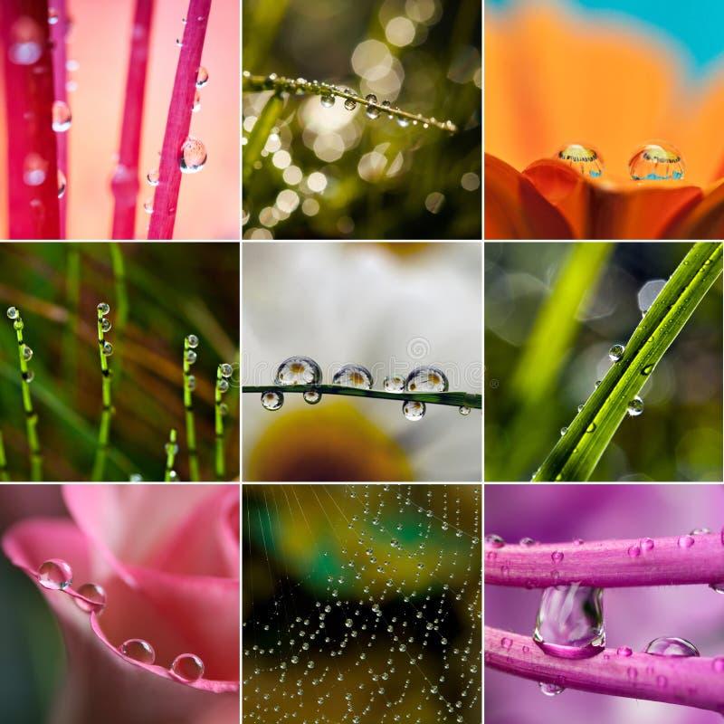 Primo piano dei waterdrops - insieme delle foto variopinte fotografia stock