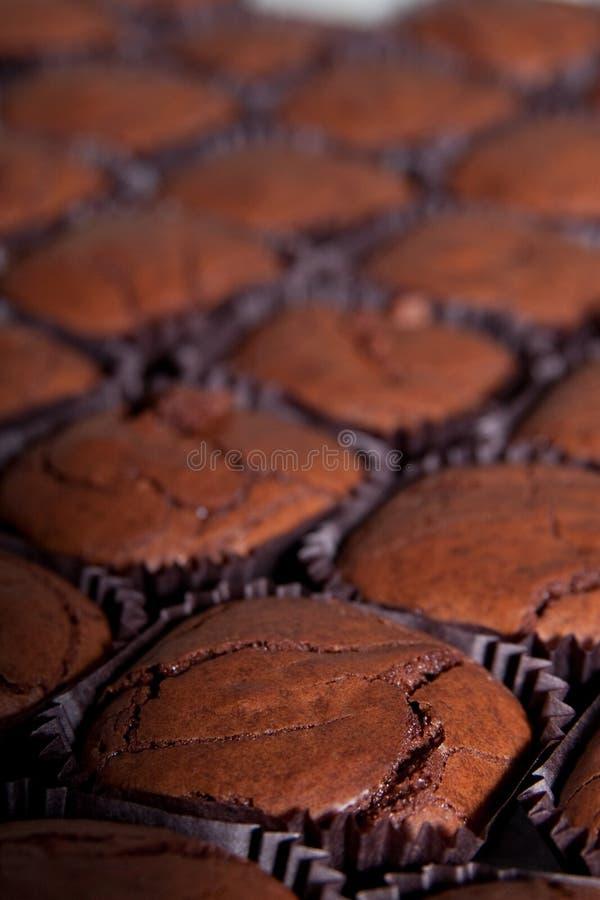 Primo piano del brownie immagini stock
