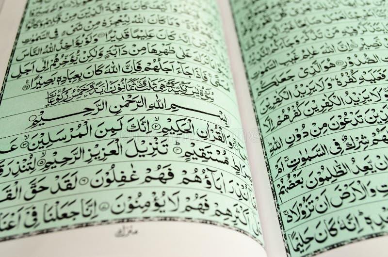 Primo piano del Corano immagini stock libere da diritti