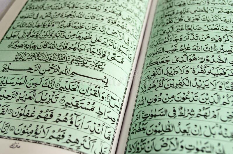 Primo piano del Corano fotografia stock libera da diritti