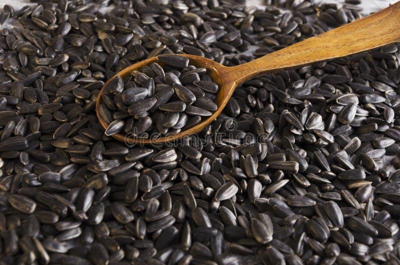Primo piano del cucchiaio di legno, semi di girasole arrostiti saporiti fotografie stock