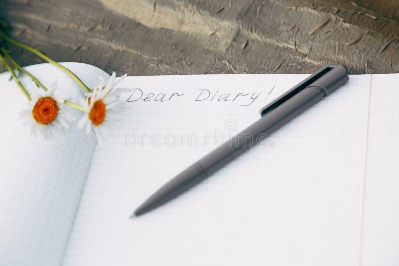 Primo piano del diario e della penna che si trovano sull'erba Romanticismo, il loro pensiero immagine stock libera da diritti