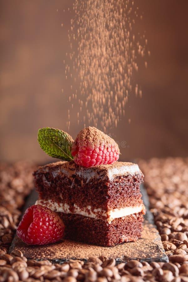 Primo piano del dolce di cioccolato con il lampone e la menta fotografia stock libera da diritti