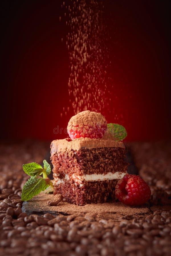 Primo piano del dolce di cioccolato con il lampone e la menta su uno spirito della tavola fotografia stock