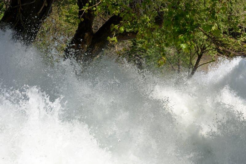 Primo piano del fiume turbolento attraverso il legno fotografie stock