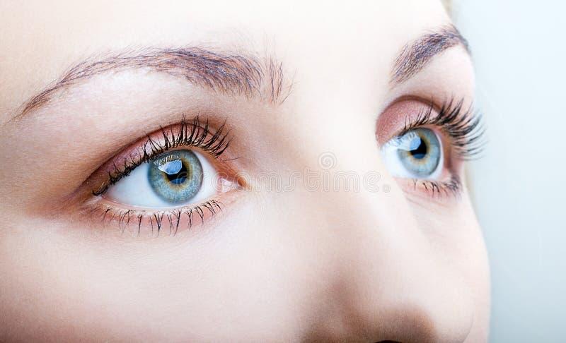 Primo piano del fronte femminile con trucco degli occhi fotografia stock