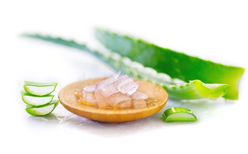 Primo piano del gel di Vera dell'aloe Cosmetici organici naturali affettati di rinnovamento di Aloevera, medicina alternativa Con immagine stock