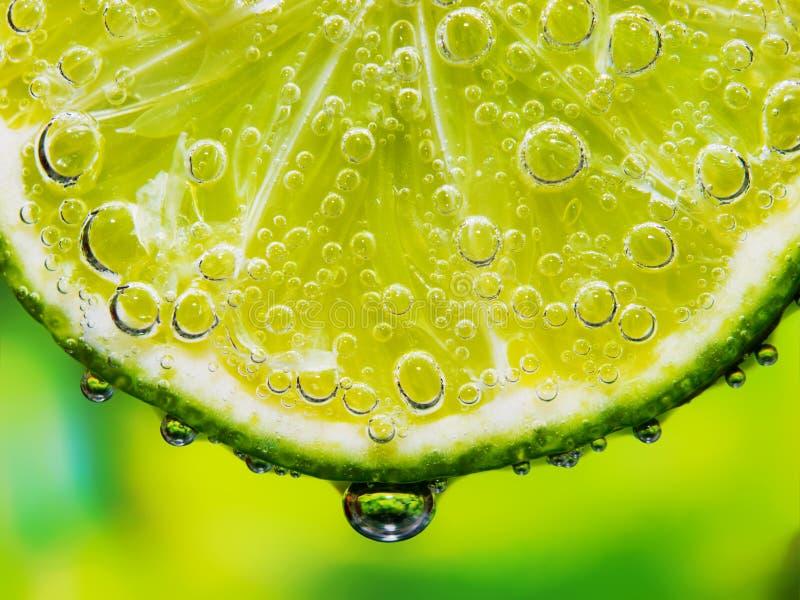 Primo piano del limone fotografia stock libera da diritti
