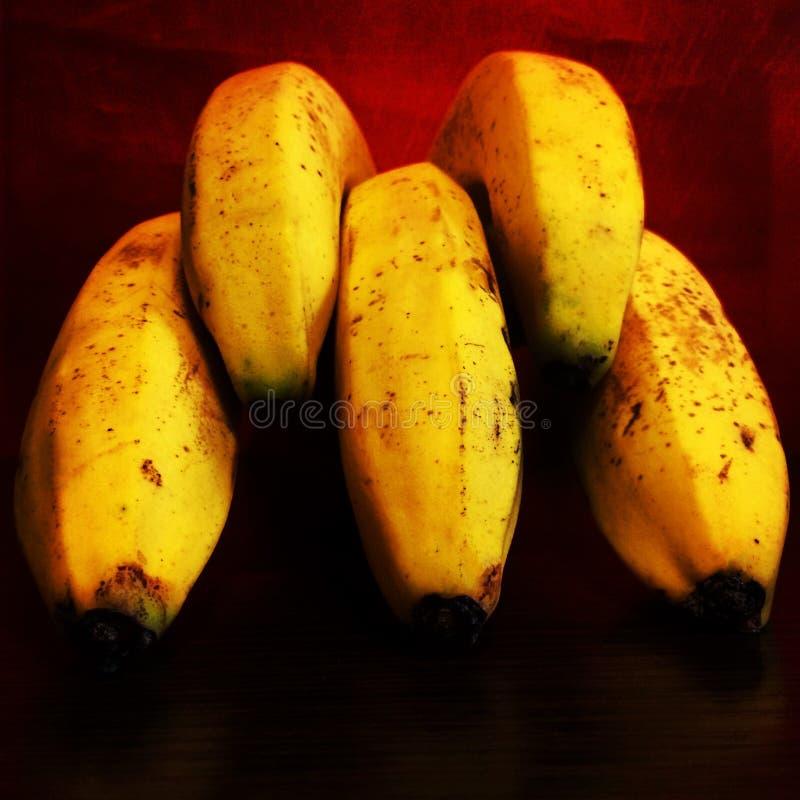 Primo piano del mazzo giallo delle banane come le dita su fondo sanguinoso rosso immagine stock libera da diritti