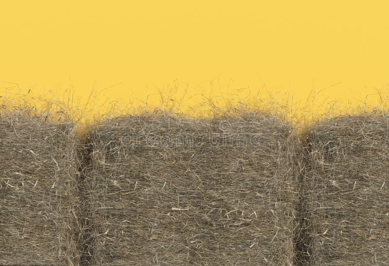 Primo piano del mucchio di fieno isolato su fondo giallo con lo spazio della copia Vista superiore 3D rendono di paglia illustrazione di stock