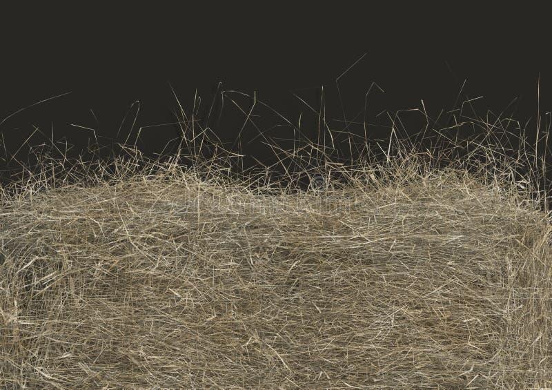 Primo piano del mucchio di fieno isolato su fondo nero con lo spazio della copia Vista superiore 3D rendono di paglia royalty illustrazione gratis