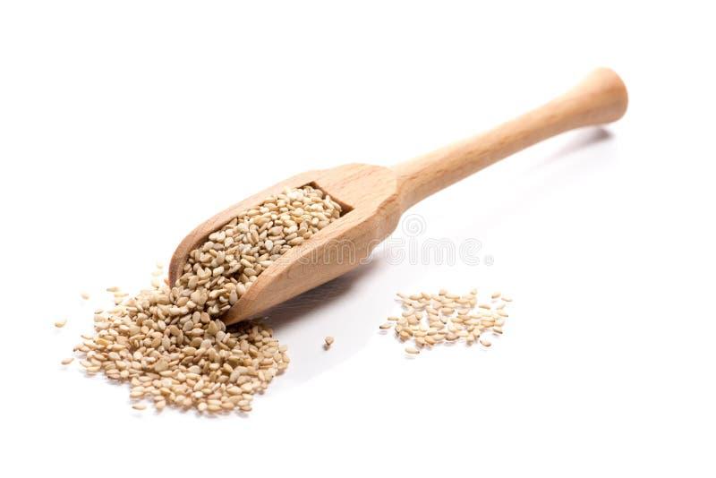 Primo piano del mucchio di interi semi di sesamo crudi del grano in uno spo di legno fotografie stock libere da diritti