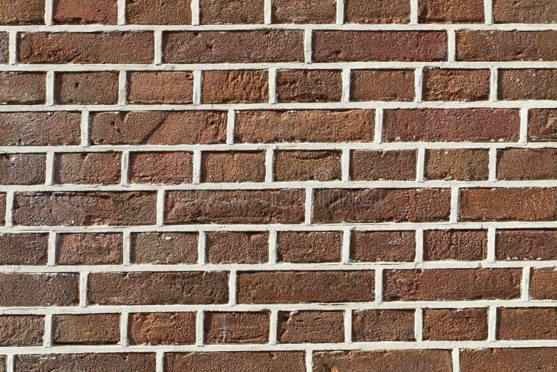 Primo piano del muro di mattoni fotografia stock libera da diritti