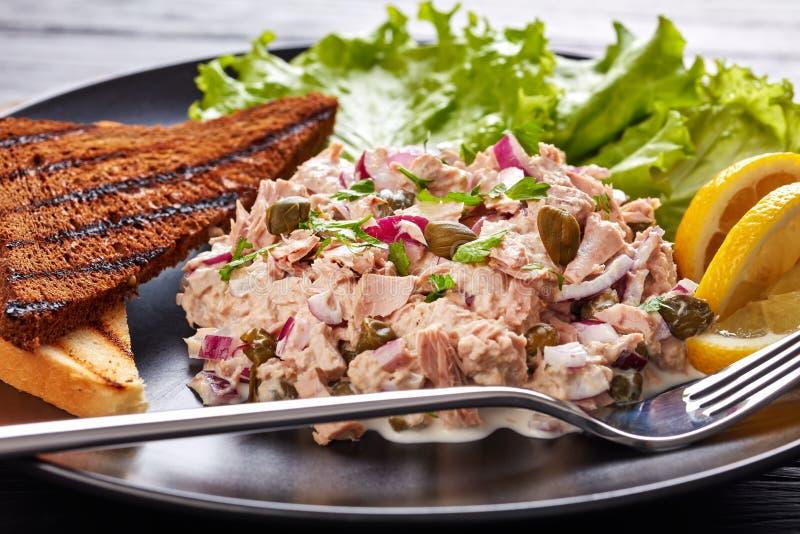 Primo piano del tonno, dei capperi e dell'insalata della cipolla rossa immagini stock libere da diritti