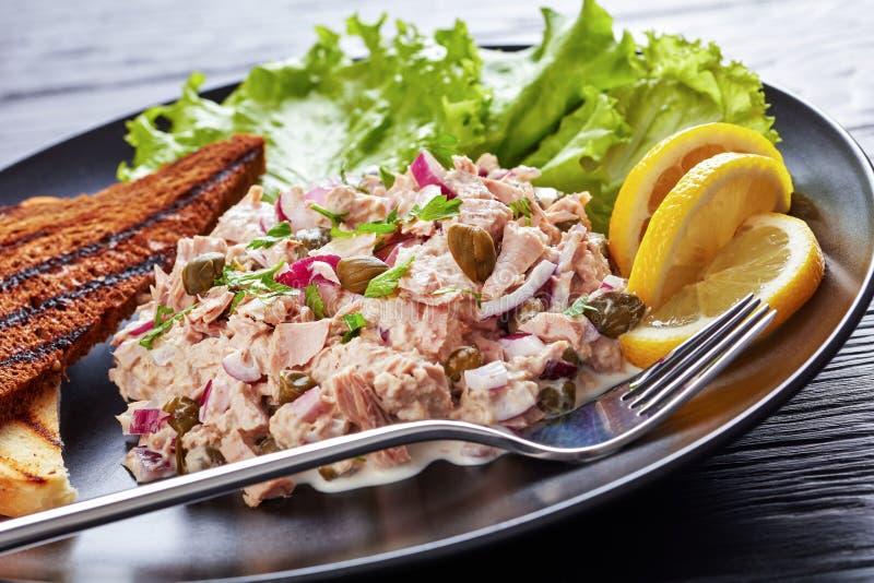 Primo piano del tonno, dei capperi e dell'insalata della cipolla rossa immagini stock