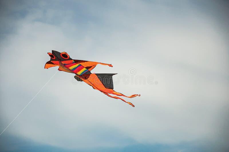 Primo piano del volo variopinto dell'aquilone in cielo soleggiato con le nuvole nel centro urbano di Ostia fotografia stock libera da diritti