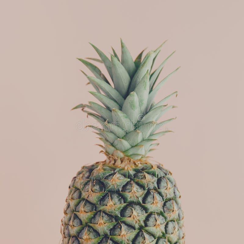 Primo piano dell'ananas sul rosa fotografia stock libera da diritti