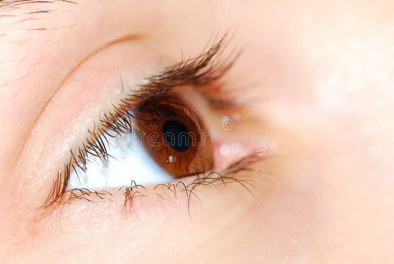 Primo piano dell'occhio immagine stock