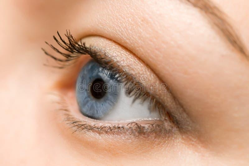 Primo piano dell'occhio azzurro della donna immagini stock libere da diritti