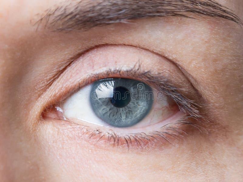 Primo piano dell'occhio azzurro naturale femminile senza trucco fotografia stock
