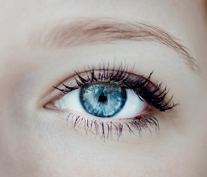 Primo piano dell'occhio umano immagini stock libere da diritti