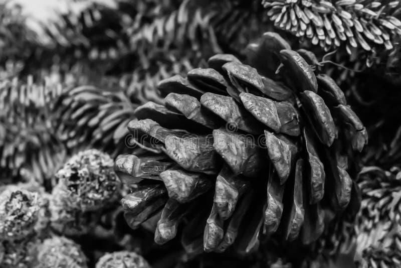 Primo piano dell'urto di progettazione del sito Web tonificato base del fondo sull'albero di Natale lanuginoso del ramo festivo immagine stock