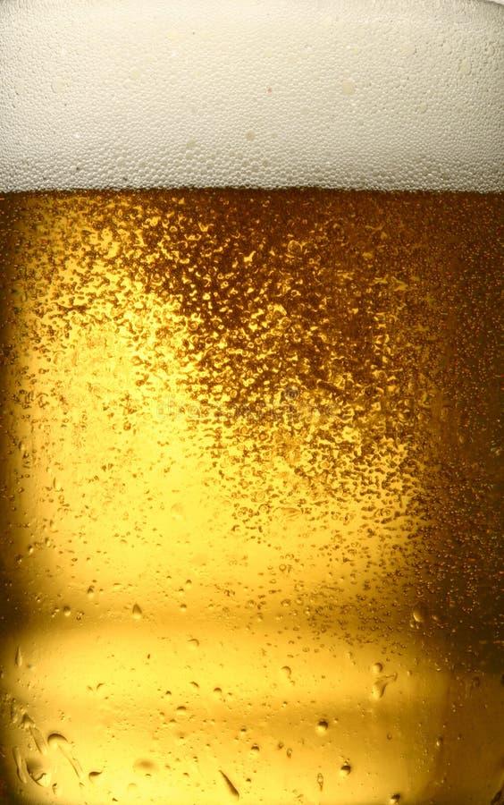 Primo piano della birra immagine stock libera da diritti