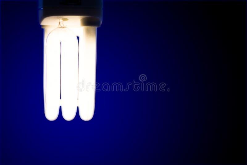 Download Primo Piano Della Lampadina Brillante Fotografia Stock - Immagine di lampada, luminoso: 7300064