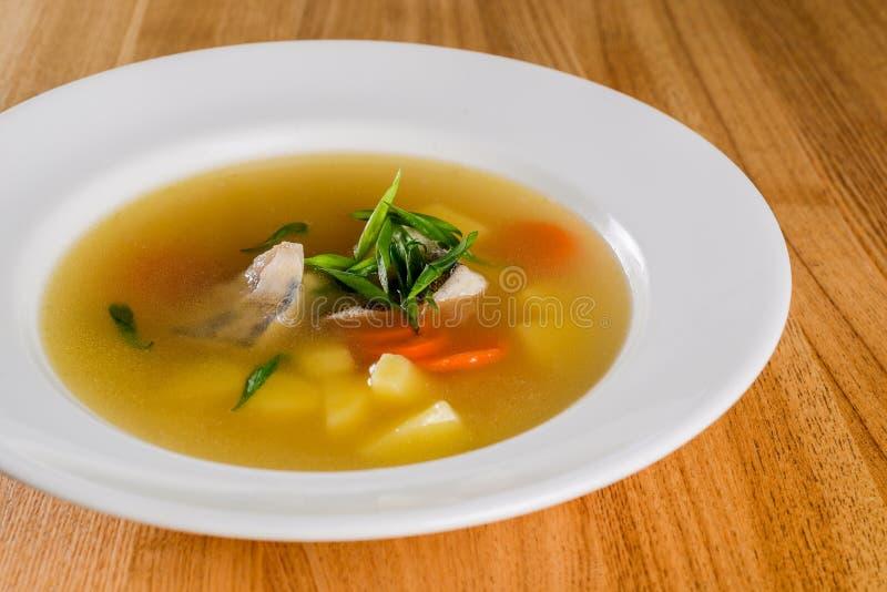 Primo piano della minestra del pesce immagini stock libere da diritti