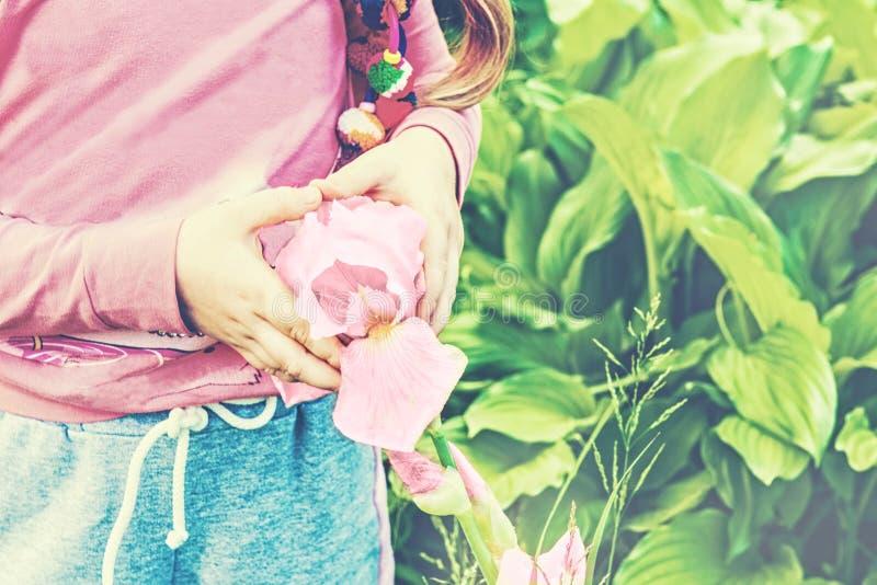 Primo piano della ragazza in una camicia rosa, tenente un fiore rosa dell'iride che sta nel giardino Mani piegate sotto forma di  fotografia stock