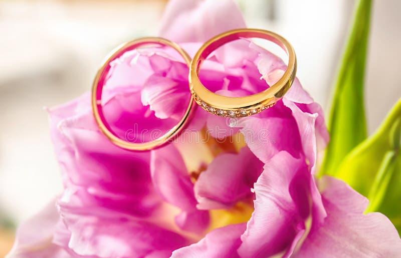 Primo piano delle fedi nuziali sul fiore rosa fotografia stock
