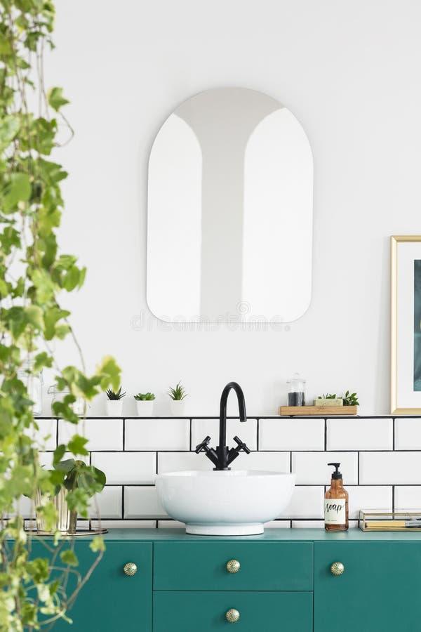 Primo piano delle foglie con uno specchio, un lavabo, un rubinetto nero e un armadietto del turchese in un interno del bagno Foto fotografia stock libera da diritti