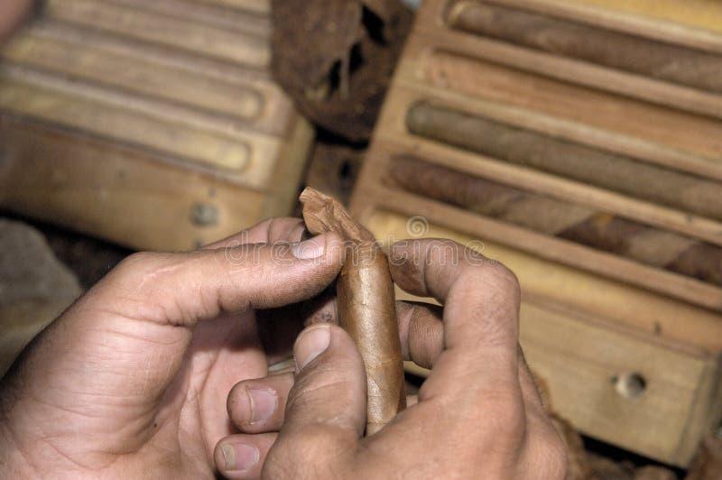 Primo piano delle mani che fanno un sigaro dalle foglie del tabacco immagine stock libera da diritti