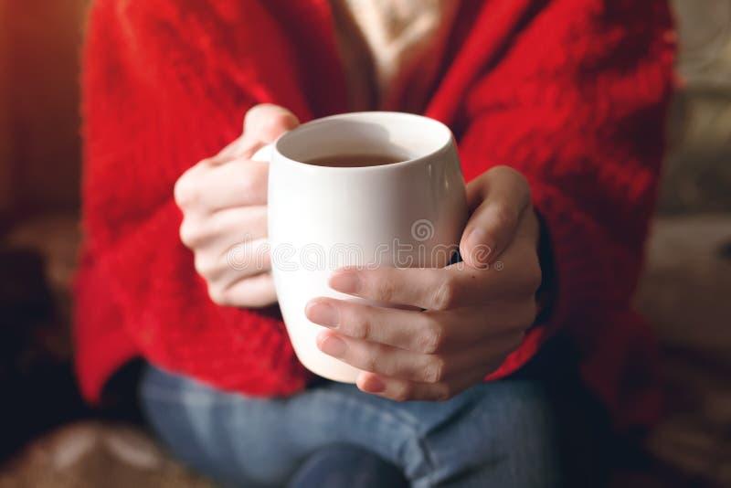 Primo piano delle mani femminili con una tazza della bevanda Bella ragazza in maglione rosso che tiene tazza di luce solare del t immagine stock