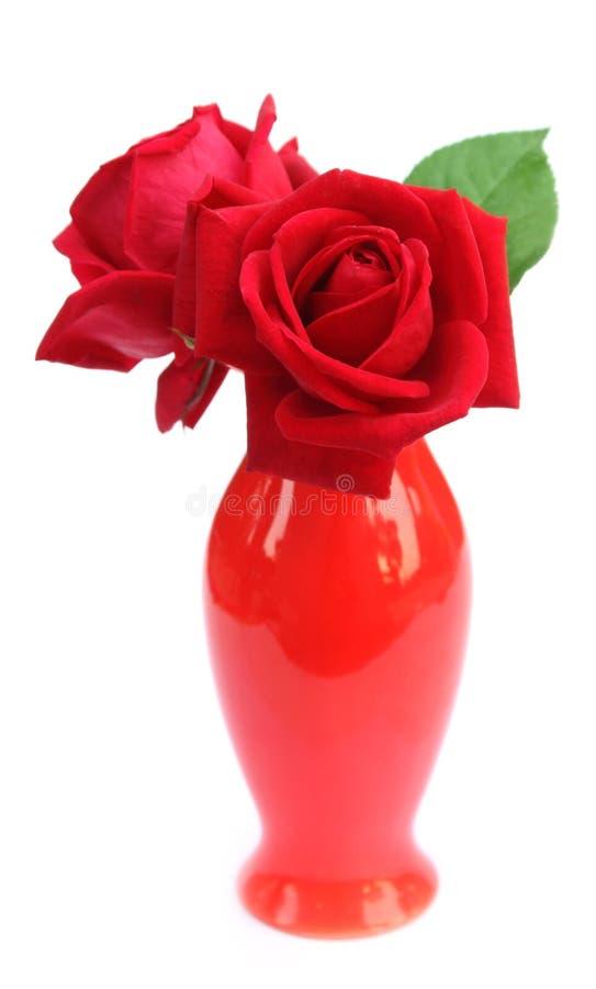 Primo piano delle rose rosse in un vaso di fiore fotografia stock libera da diritti