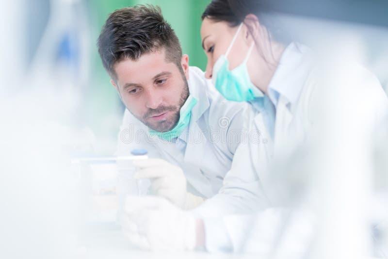 Primo piano dello studente di odontoiatria che pratica su un manichino medico fotografie stock libere da diritti