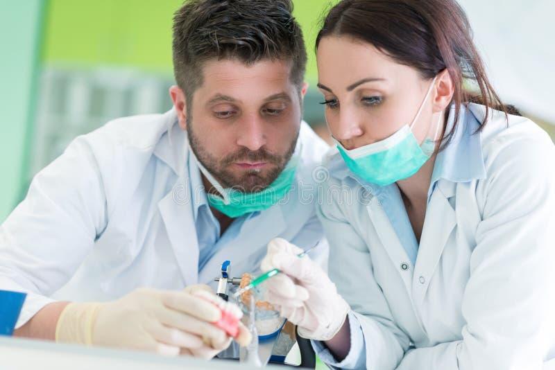 Primo piano dello studente di odontoiatria che pratica su un manichino medico fotografie stock