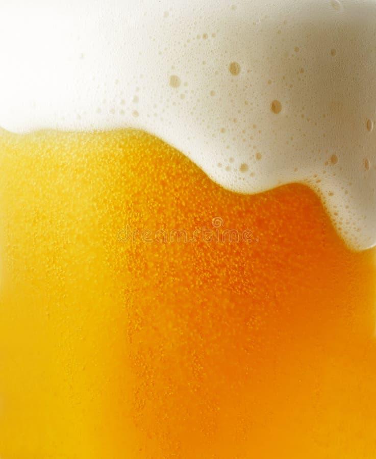 Primo piano di birra fotografie stock