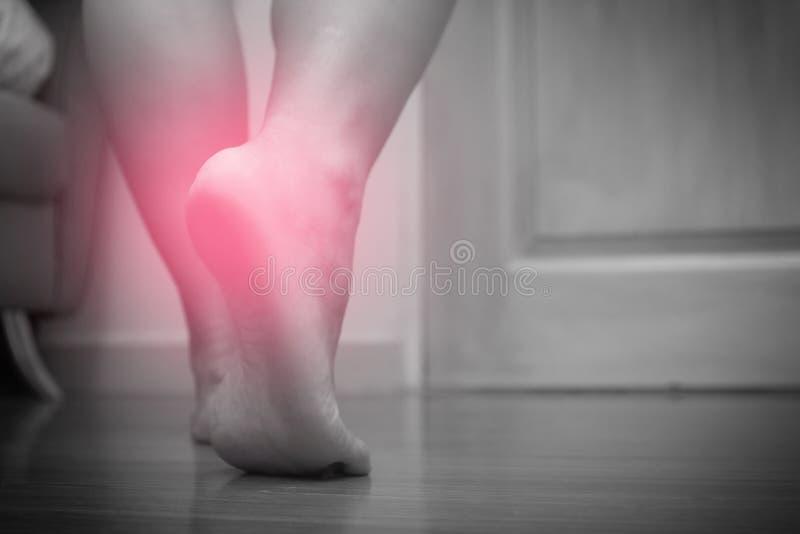 Primo piano di dolore femminile del tallone del piede destro, con il punto rosso, fascite plantari Tono in bianco e nero fotografie stock libere da diritti