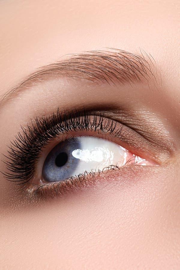 Primo piano di eleganza dell'occhio femminile con trucco fumoso classico di marrone scuro Macro colpo della parte del fronte dell fotografie stock