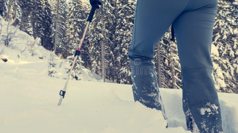 Primo piano di escursione degli stivali su un percorso della neve immagini stock