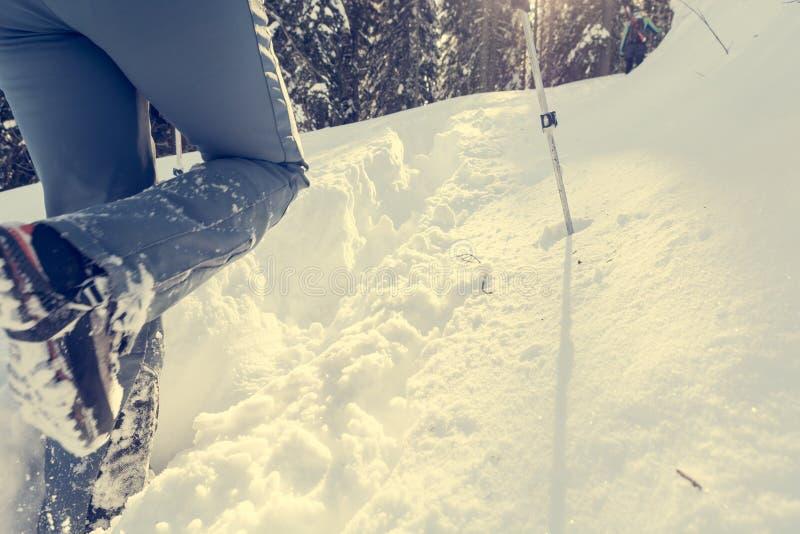 Primo piano di escursione degli stivali su un percorso della neve fotografia stock