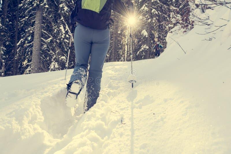 Primo piano di escursione degli stivali su un percorso della neve immagine stock libera da diritti
