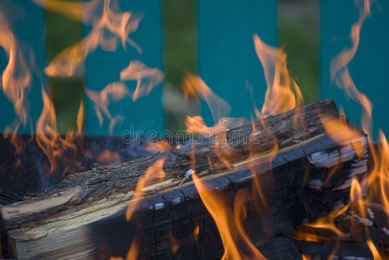 Primo piano di fuoco e delle fiamme su uno sfondo naturale vago immagine stock libera da diritti