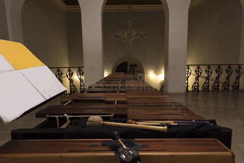 Primo piano di legno moderno della marimba immagine stock libera da diritti