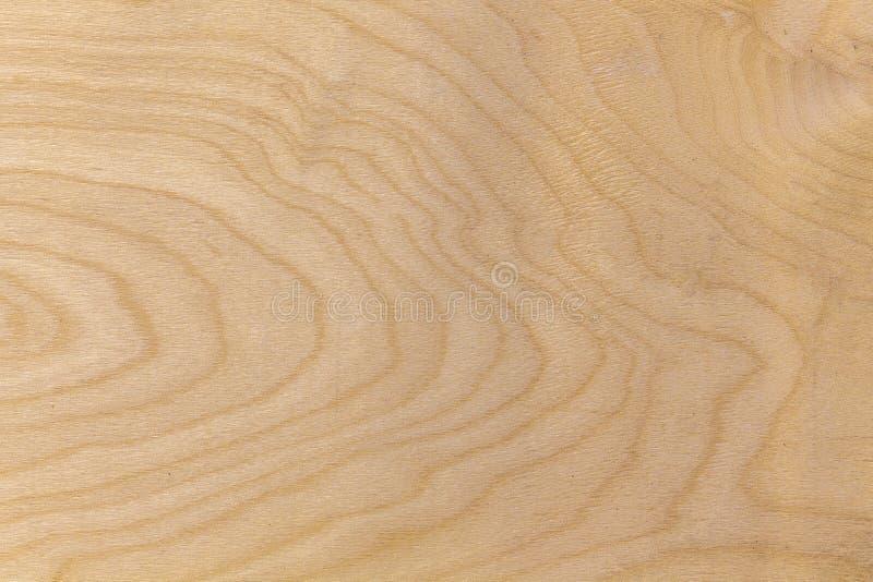Primo piano di legno naturale di struttura fotografie stock libere da diritti