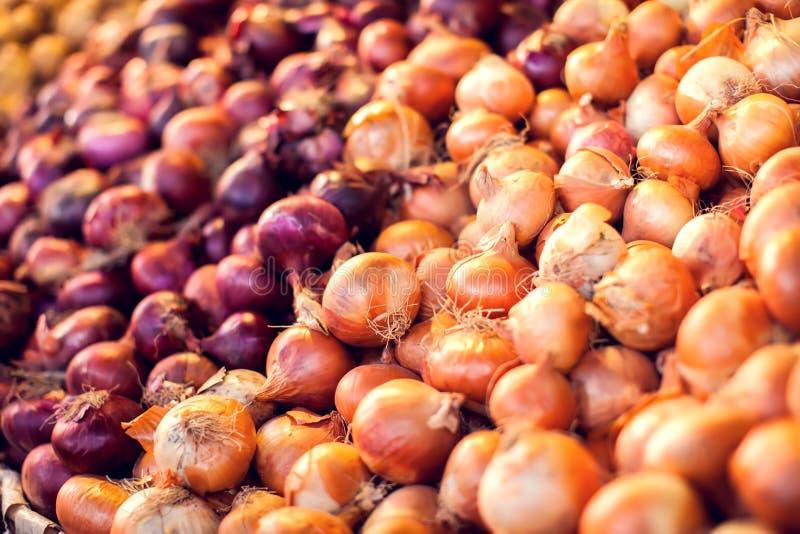 Primo piano di molte cipolle organiche della lampadina e delle cipolle rosse asciutte sull'esposizione dello scaffale da vendere  fotografia stock