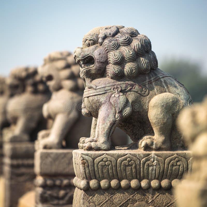 Primo piano di pietra antico del leone fotografia stock libera da diritti