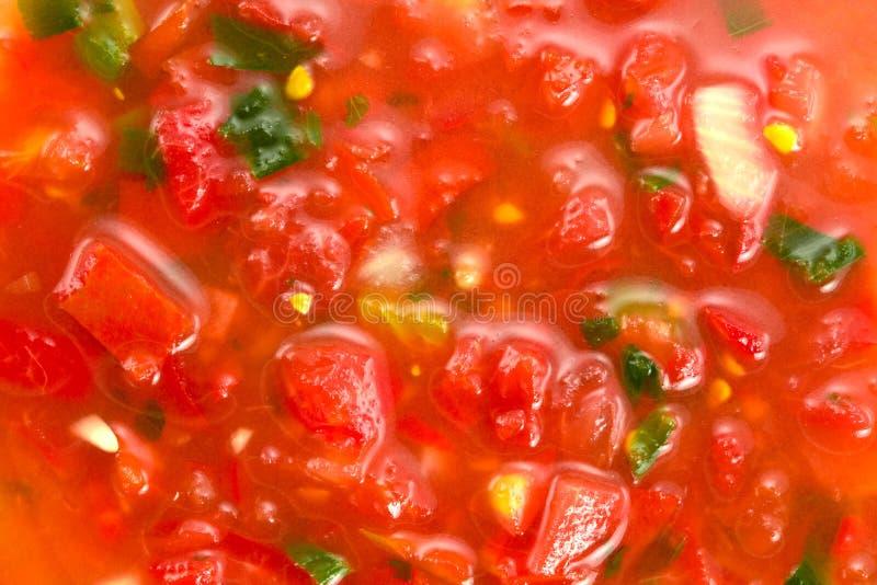 Primo piano di salsa immagini stock